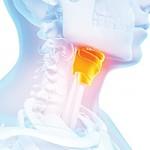 Problemas de la tiroides: la causa oculta de la disfunción sexual