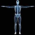 Efectos de los rayos X en los testículos
